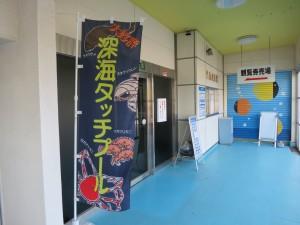 竹島水族館2