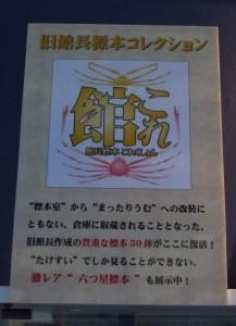 竹島水族館 館これ2